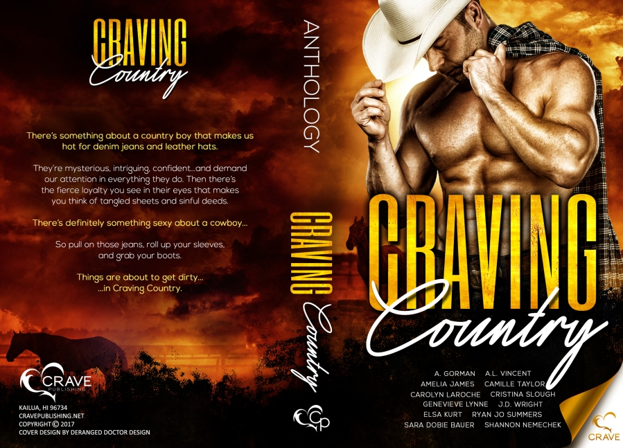 Craving Country FINAL paperback