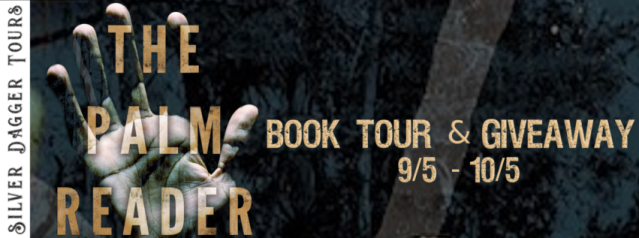 the palm reader banner