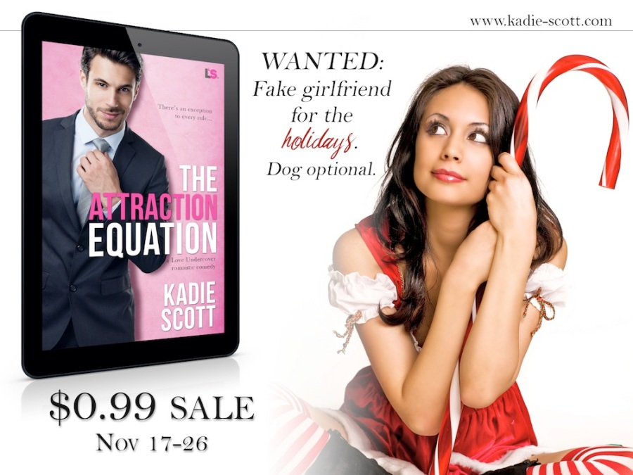 AttractionEquation-99centdeal-3
