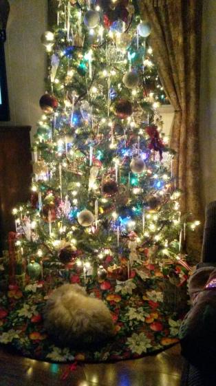 Leanne Tyler Christmas photo