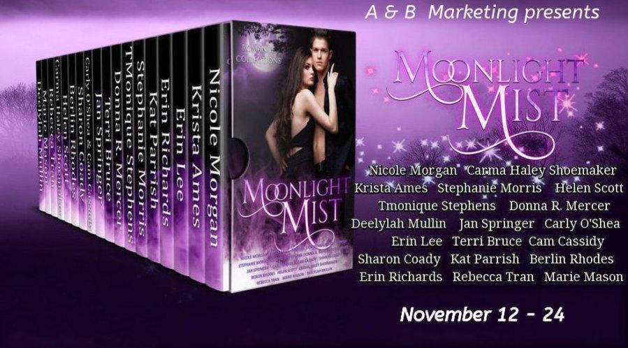 Moonlight Mist tour graphic